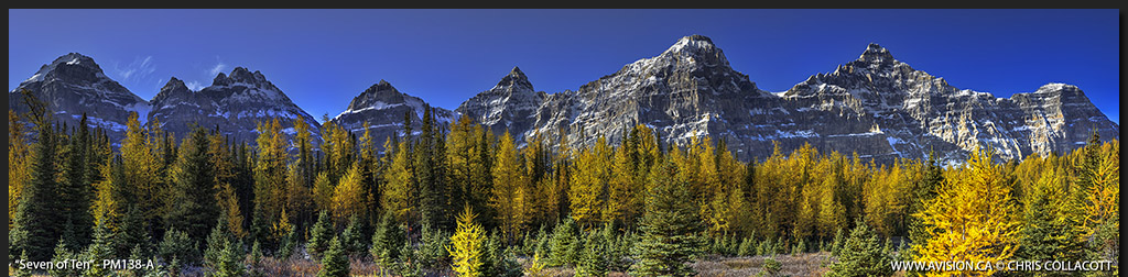 PM138-A-Seven-Of-Ten-Larches-Valley-of-Ten-Peaks-Banff-National-Park-Chris-Collacott