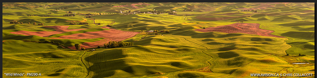PM290-Wild-Winds-Steptoe-Butte-Panorama-WA-USA-Chris-Collacott