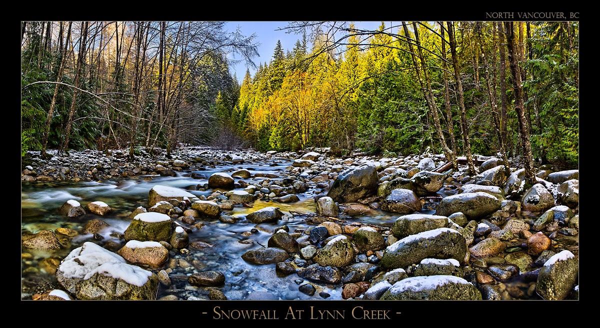 Snowfall At Lynn Creek