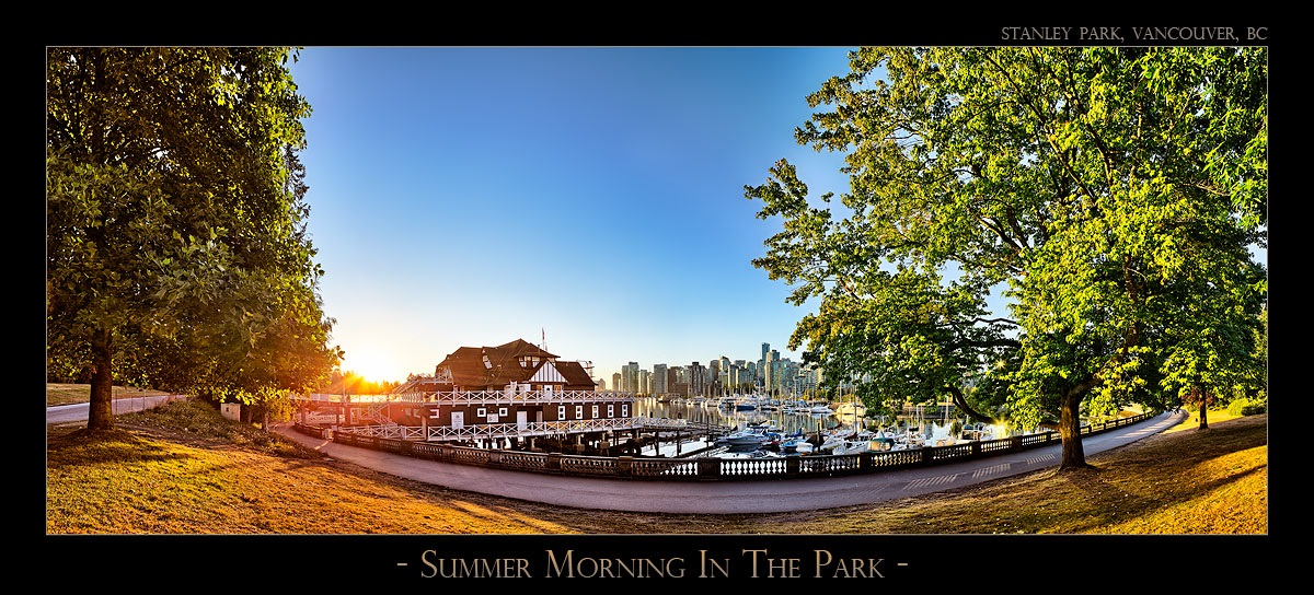 Summer Morning In The Park - 6897