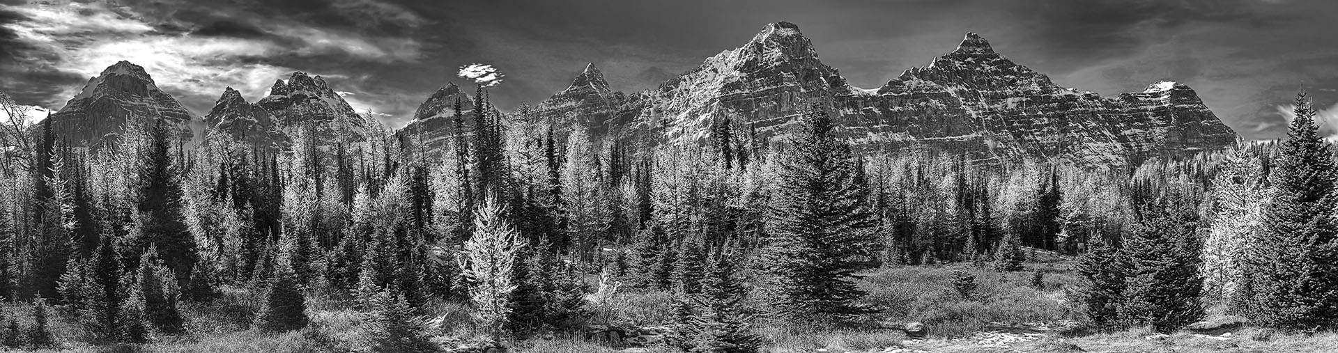 Ten_Peaks_Larch_Valley_TL191B