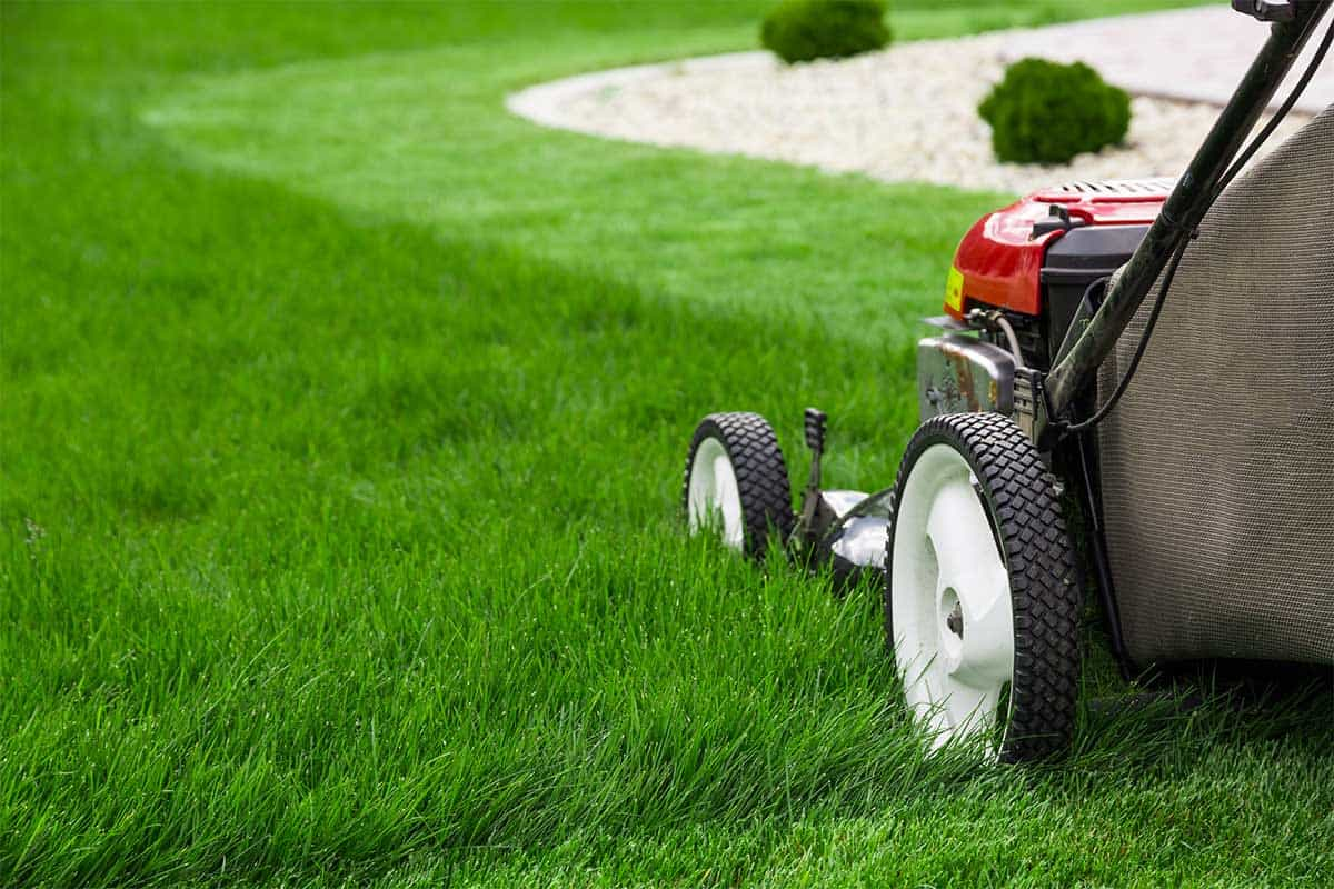 Yard Maintenance Services | Lawn Care | Landscape Maintenance Vancouver WA