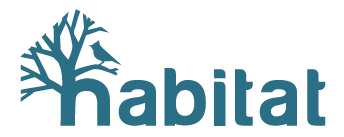 Habitat Work/Surf Retreat