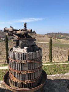 Croatia wine tours dignac vineyards