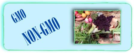 GMO-non-GMO