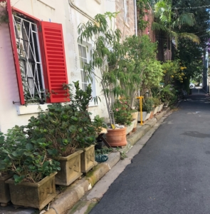 Laneway Gardens of Surry Hills