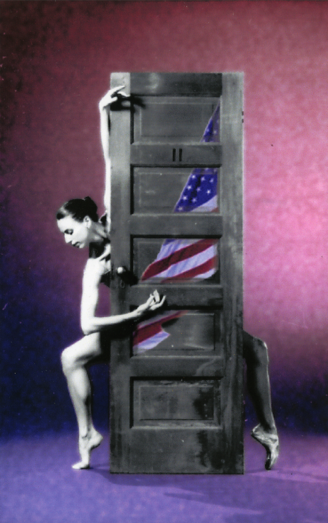 saltmarsh door american flag