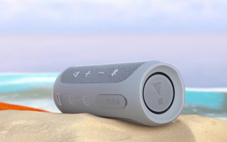 Loudest Portable Speakers: Top 5 Choices in 2020 (Buying Guide)