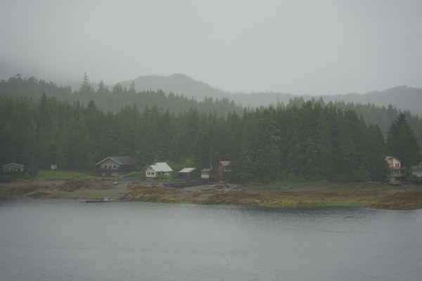 Fog and trees surround quiet houses in Alaska.