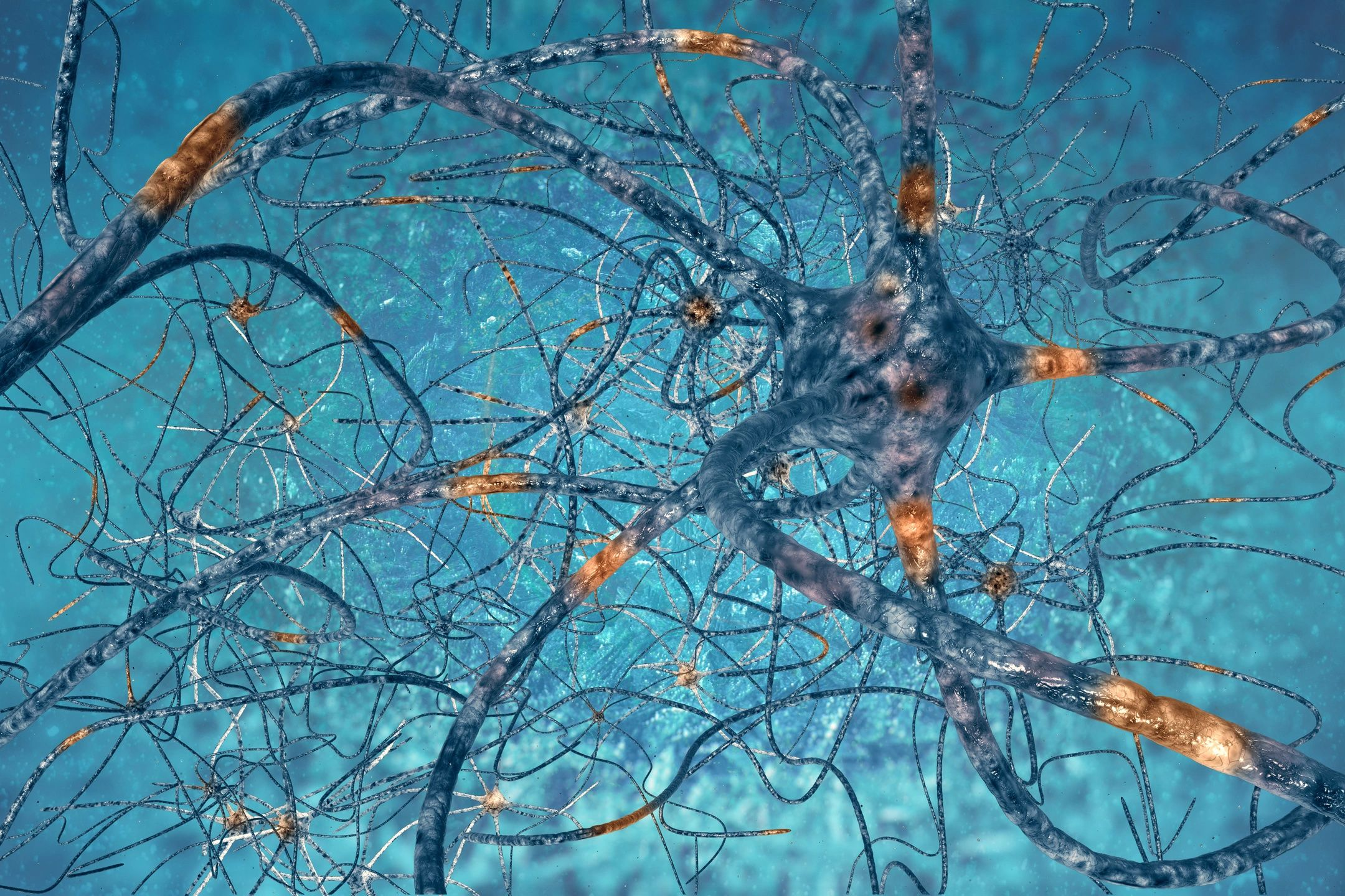 Neurotransmitter: The quest for electro-chemical balance.