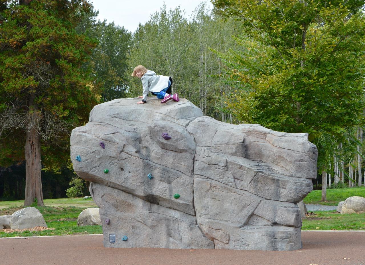 Confluence Park Rock Climber
