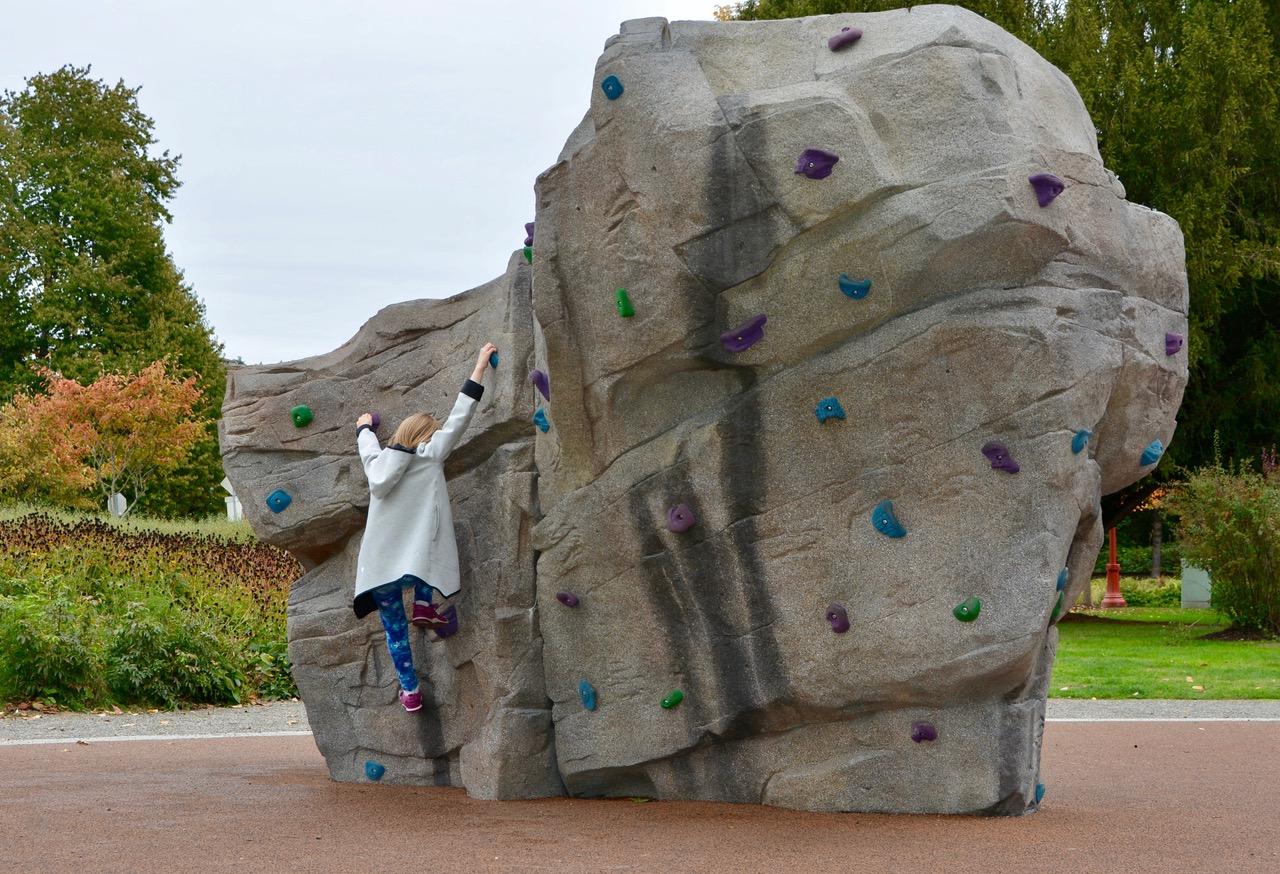 Confluence Park IDS Climbing Structure