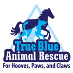 True Blue Animal Rescue