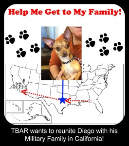 Diego Goes Home