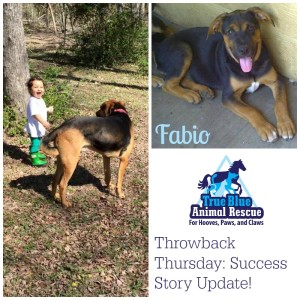 True-Blue-Animal-Rescue-Throwback-Success-Fabio