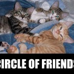 True-Blue-Animal-Rescue-Circle-of-Friends