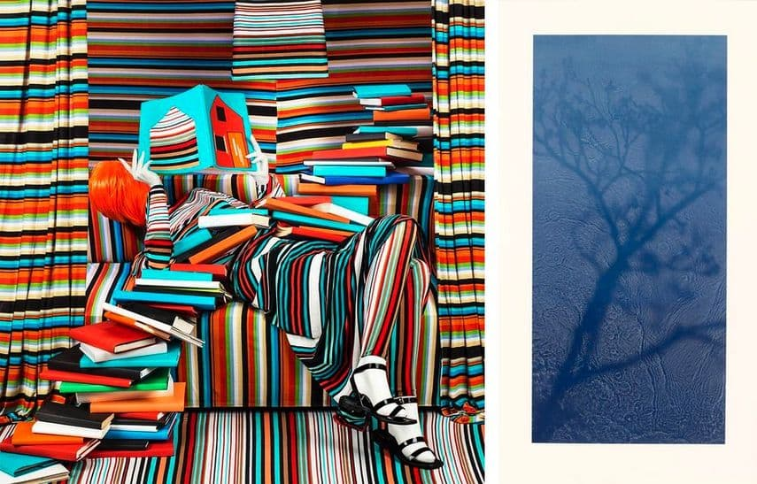 Patty Carrol - Striped Books: engrossed in her reading, the books coloured her life, 2018, Susan Derges - Willow, 2018