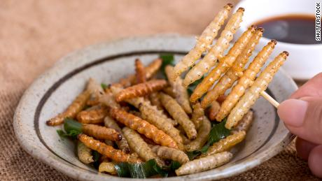 Worms served like French fries