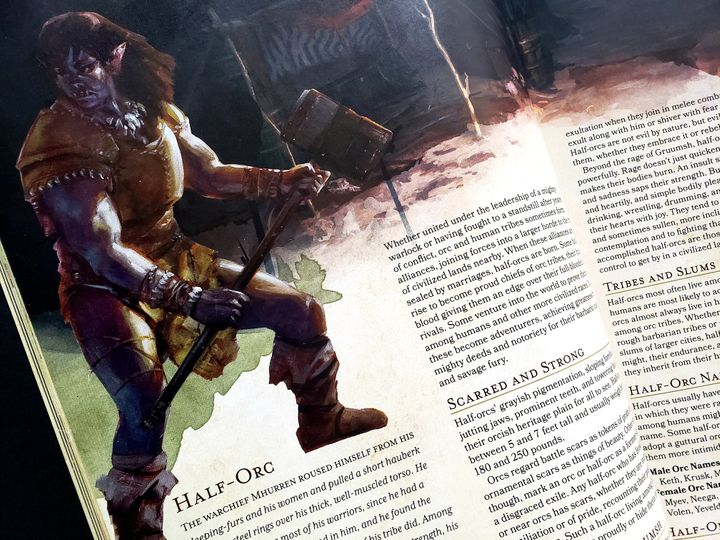 """A half-orc, as depicted in the fifth edition of D&D """"Player's Handbook."""""""