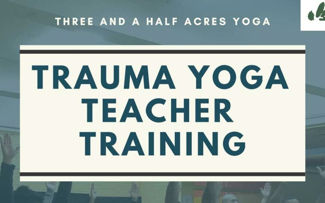 East Coast Trauma Yoga Teacher Training 2020