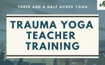 Trauma Yoga Teacher Training 2019