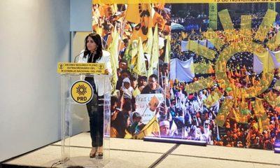 La presidenta del PRD, Alejandra Barrales, dijo que el partido seguirá en el Frente