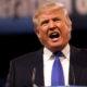 Donald Trump, presidente de Estados Unidos Foto: especial