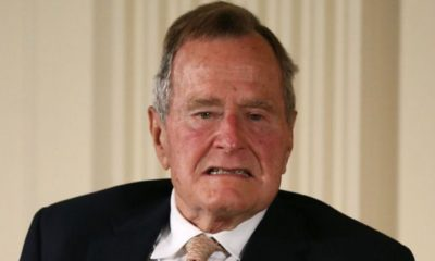 Bush padre