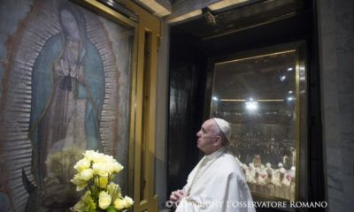 Papa Francisco pederastas pedofilia