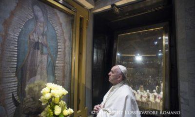 papa francisco pederastas