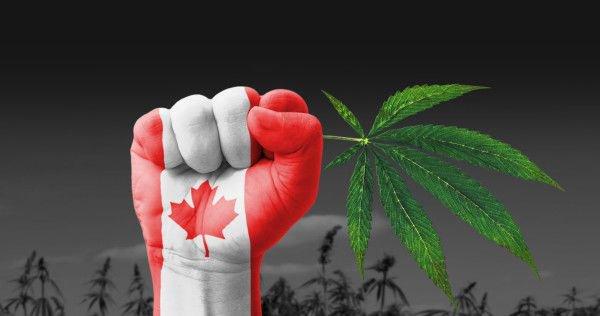 Canadá marihauana