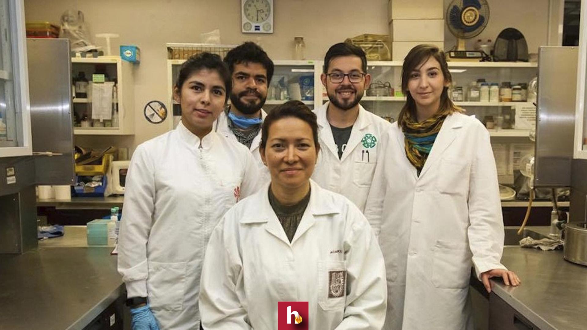 Estudiantes, IPN, cura, papiloma humano, VPH, papiloma,
