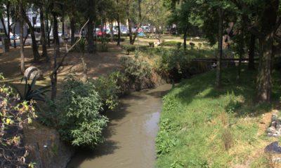 Río Magdalena Coyoacán Francisco Mendoza