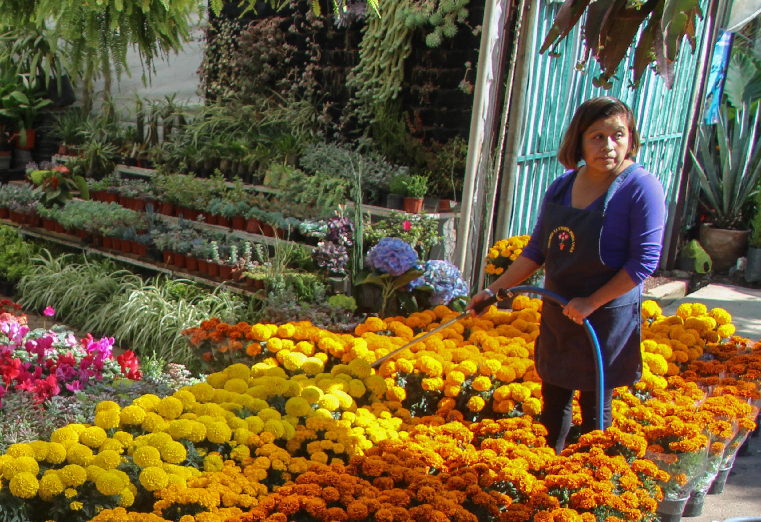Mercado de flores de Cuemanco