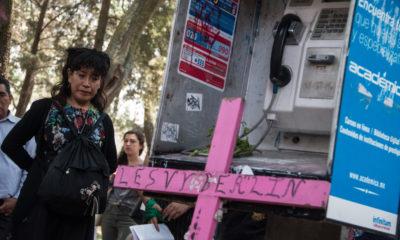Caso Lesvy y más en los números de México y el Mundo
