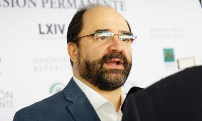 Insuficientes, las acciones ante inseguridad en CDMX: Álvarez Icaza
