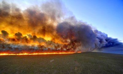 incendio consume la amazonia