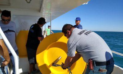 Profepa resguarda a la vaquita marina con boyas