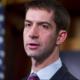 Legislador de Arkansas critica la estrategia de AMLO contra el crimen organizado