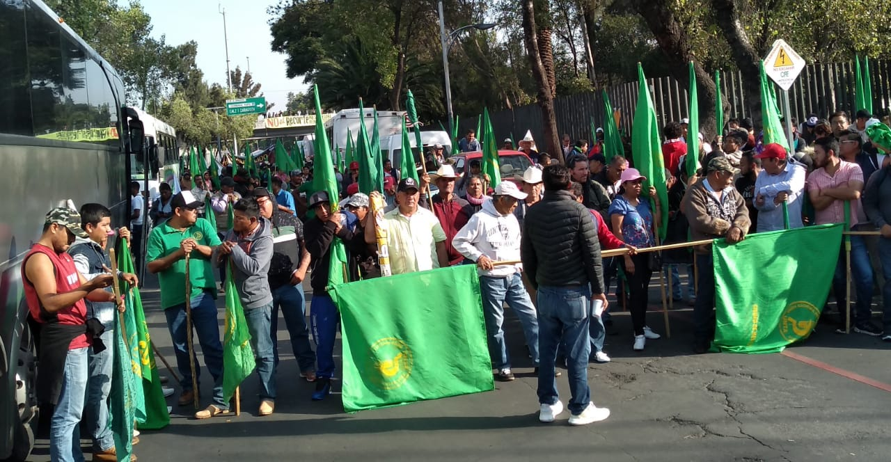 Desfile, Campesinos, Marcha, Manifestación, Revolución Mexicana, Zócalo, Diputados, San Lázaro,