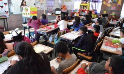 En 2024 escuelas públicas deberán ser incluyentes: Senado