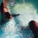 Lobos marinos rescatados vivirán en el Zoológico de Chapultepec