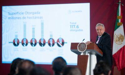 Andrés Manuel, López Obrador, Felipe Calderón, Vicente Fox, Enrique Peña Nieto, Concesiones, Salinas de Gortari,