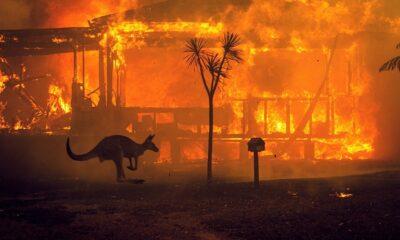 Evacuarán a miles de personas por intensificación de incendio en Australia