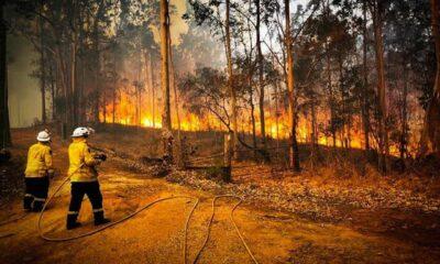 Tenistas organizan evento para recaudar fondos ante los incendios en Australia