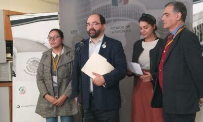 Vergonzoso usar fuerza contra migrantes, acusa Álvarez Icaza