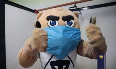 Goyo, mascota de Los Pumas, promueve uso de cubrebocas