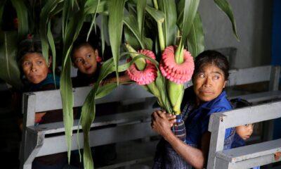 ONU advierte que el Covid-19 puede acabar con los progresos en igualdad de género
