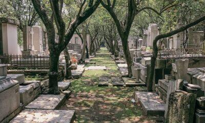 CDMX y Edomex suspenden visitas a panteones por Día de Muertos
