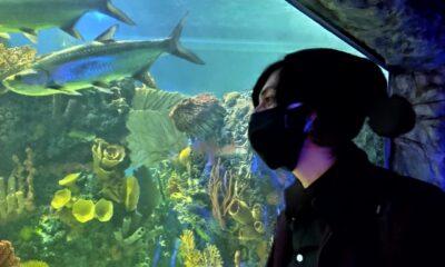 Visitantes ignoran medidas sanitarias en acuario de la CDMX